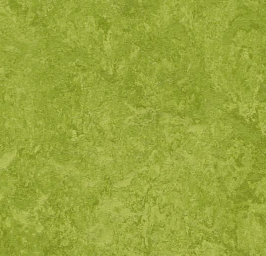 Линолеум Marmoleum Real 3247 Forbo