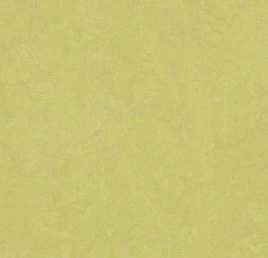 Линолеум Forbo Marmoleum Fresco 3885 spring buds