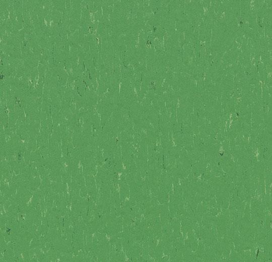 Линолеум Forbo Marmoleum Solid Piano 3647/364735 nettle green