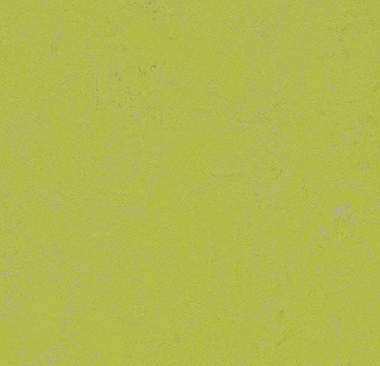 Линолеум Forbo Marmoleum Solid Concrete 3742/374235 green glow