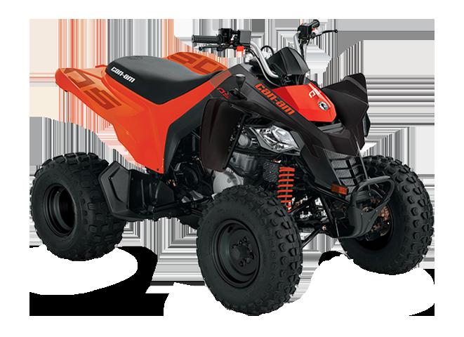 Квадроциклы DS BASE 250 2021