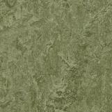 Линолеум Marmoleum Real 3255 Forbo
