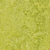 Линолеум Marmoleum Real 3224 Forbo