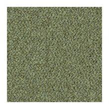 Ковровая плитка Tessera Chroma 3613 pasture