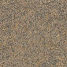 Ковролин Forbo Forte Color 96004