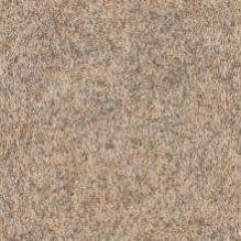 Ковролин Forbo Markant 11103