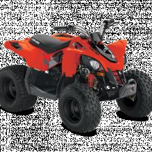 Квадроциклы DS 90 2021