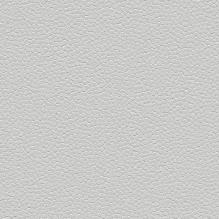 Линолеум Forbo Safestep Aqua 180262 trout