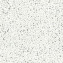 Токопроводящая ПВХ плитка Lino Fatra Electrostatic Dynamic Elektrostatik X, Dynamik X 1002