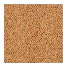 Ковровая плитка Tessera Chroma 3623 tangerine